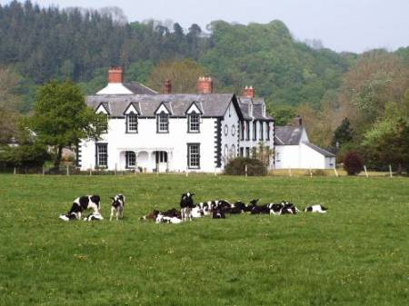 Dolhaidd Mansion Holiday Cottages
